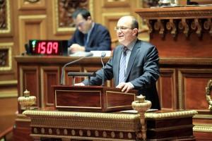 André Gattolin au Sénat
