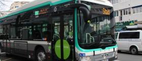 Bus 21